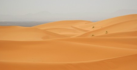t_deserto_sahara_170