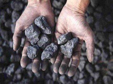 carbone_mani
