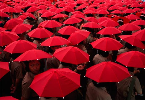 in-the-red-umbrellas