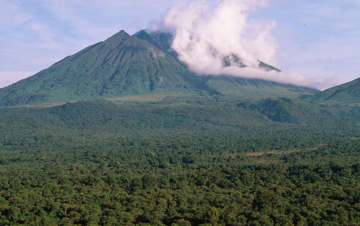 Sabinyo volcano and thick forest, habitat of the endangered Mountain gorilla Virunga National Park, Democratic Republic of Congo